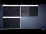 Как взломать сеть с Kali Linux