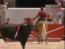 Конь Мерлин - легендарный боец корриды