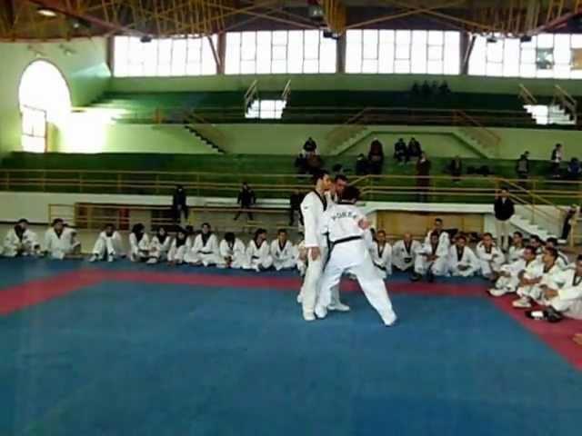 Stage d'entraîneur à Tunis avec Maitre Jinyung kim partie 2 par maître Mounir nouioui