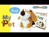 JUMPINGCLAY MYPET SERIES_BEAGLE