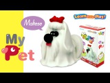 JUMPINGCLAY MYPET SERIES_MALTESE