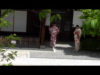 Travel to Kyoto in Japan ~trip to kiyomizudera, Nijo, golden pavilion and Fushimi Inari shrine~