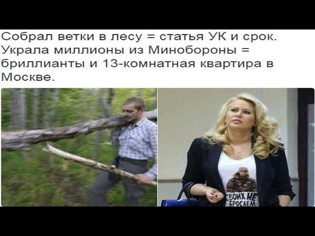 Диагноз властям РФ. Закон о трех веточках