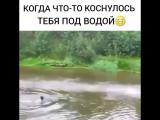 [Kavkaz vine] когда что то коснулось тебя под водой😅😅😅