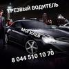 """Услуга """"ТРЕЗВЫЙ ВОДИТЕЛЬ"""" в Могилеве"""