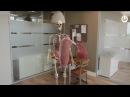 Project Esper Mixed Reality Anatomy Learning