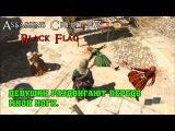 Прохождение Assassin's Creed IV: Black Flag #3 (Девушки раздвигают передо мной ноги)