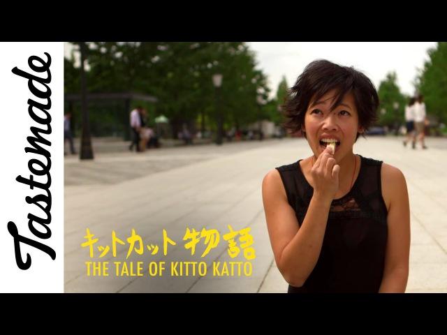 Rum Raisin Kit Kats in Tokyo   Tale of Kitto Katto