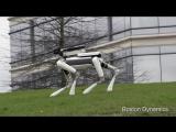 Introducing SpotMini. Новый робот от Boston Dynamics