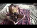 102 летний садху, делающий йогу на КумбхаМеле в Насике