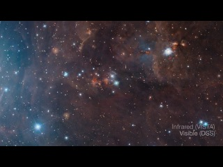 Visible/infrared comparison of views of the Orion A molecular cloud