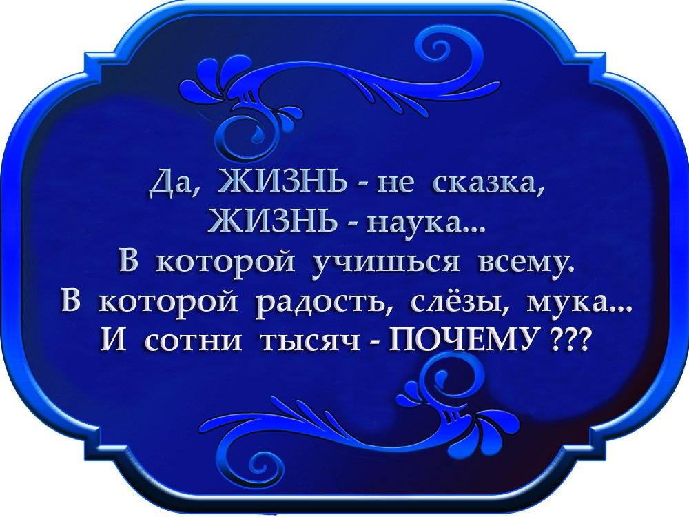 https://pp.vk.me/c604531/v604531339/42cb2/U1ZmvMEJjrA.jpg