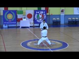 TAKASHI YAMAGUCHI - Kata Bunkai Tekki Sandan