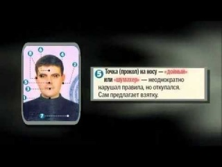 Шифровки ГАИ на водительских правах