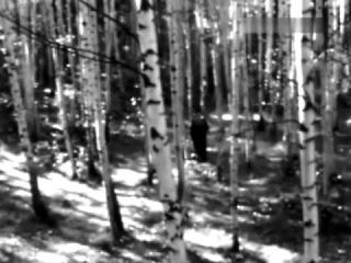 Людмила Зыкина - Песня девушки (муз. Арно Бабаджаняна - ст. Ивана Юшина)