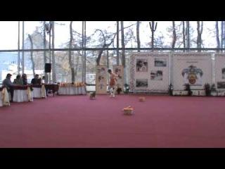 Немецкий миниатюрный шпиц Рич и Ейбогина Людмила класс