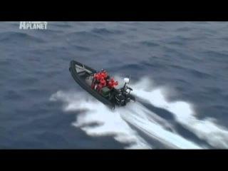Whale Wars Китовые Войны