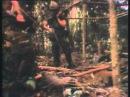 Vietnam War 03of12 Courage under FireВьетнам,война