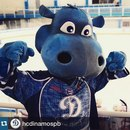 Nikita Lisovoy фото #50