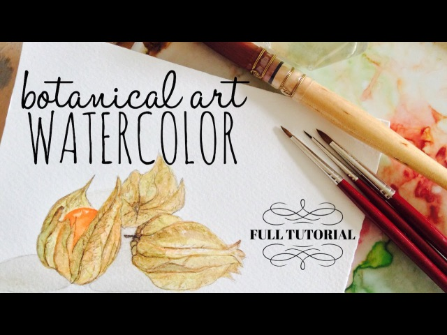 Botanical Art Tutorial ~физалис