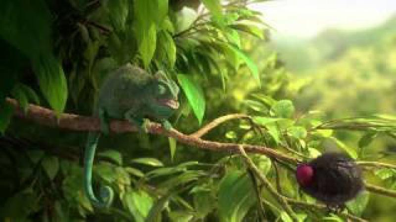 Самый смешной мультфильм 2 'Жадный хамелеон' Funny cartoon ' Greedy Chameleon '