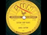 James Cotton Cotton Crop Blues SUN 206