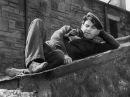 Звезды смотрят вниз 1940 фильм