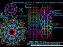 FRACTALS, DNA, GOLDEN RATIO - Dan Winter ( MUST WATCH )