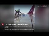 Техники Turkish Airlines вручную обрабатывали самолет против обледенения