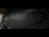 Фильм Монстр-траки (2016). Русский трейлер. Смотреть онлайн в хорошем качестве.