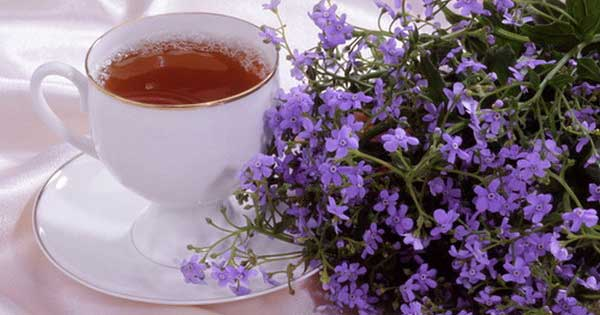 Чай тимьяна для акне