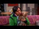 Собака - целовака (Теория большого взрыва The Big Bang Theory Радж Раджеш Кутраппали Корица Коричка Говард и Радж)
