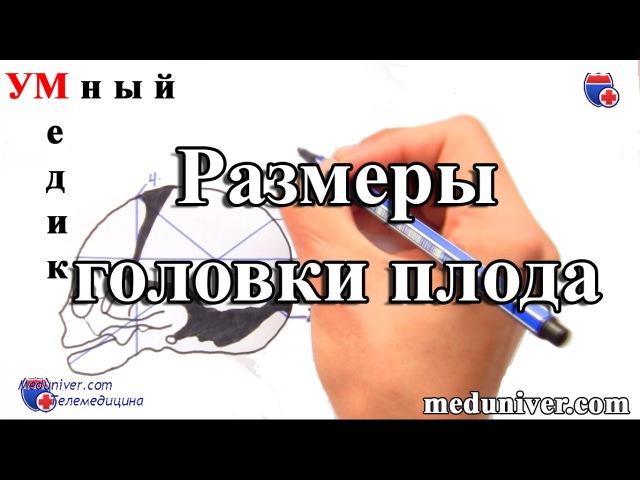 smotret-vaginalnoe-issledovanie-telka-kommentiruet-masturbatsiyu-pered-kompom