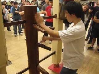 Wing Chun Kung Fu Wooden Dummy, Chi Sao