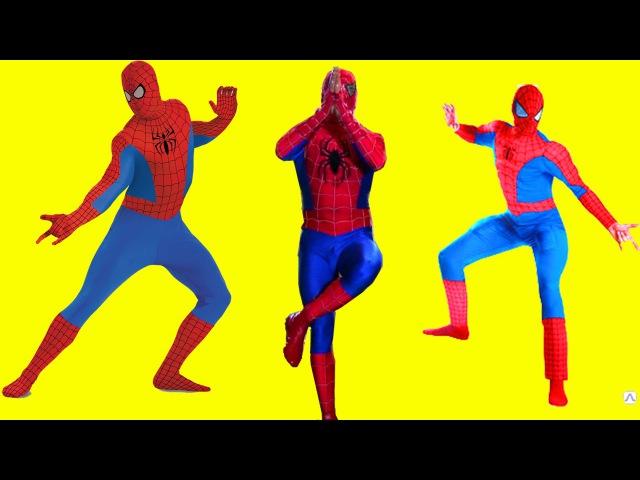 Человек паук танцует Зарядка для детей Spider-Man dancing