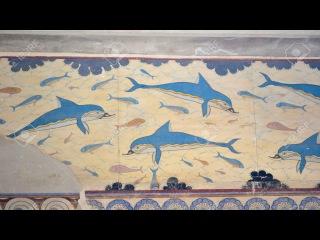 Шок! Дельфины произошли от людей и построили цивилизацию