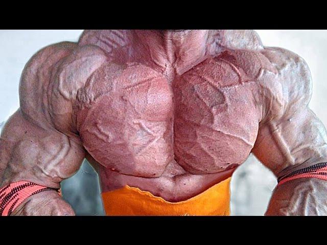 Bodybuilding Motivation - EPIC CHEST DAY (2017)