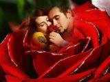 Любовь Без Правил, Красивые Песни о Любви, Мария Богомолова  #музыка