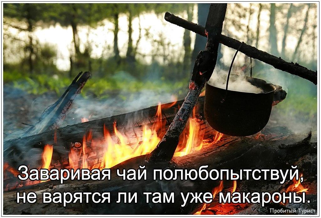 https://pp.vk.me/c604618/v604618463/157e2/CGgNTGzF3mc.jpg