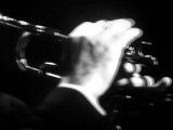 ТИМОФЕЙ ДОКШИЦЕР (труба) Цыганские напевы