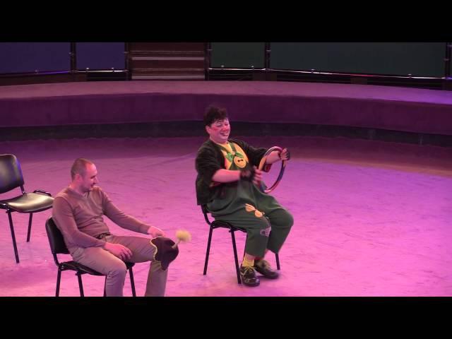 Львівський цирк , Клоунський дует «Тарасик Юрасик» , програма Караван удачі