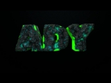 Nova Intro da A D Y_HD.mp4