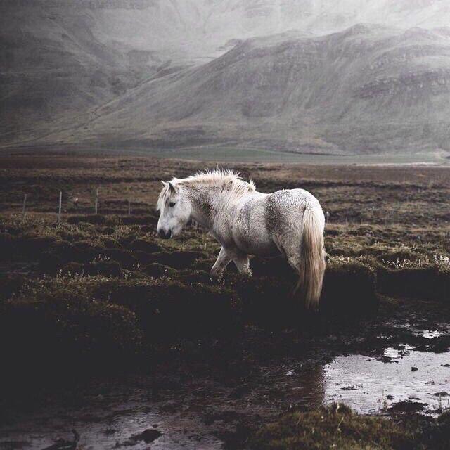 Роскошные пейзажи Норвегии - Страница 3 MAdAEW7IYD0