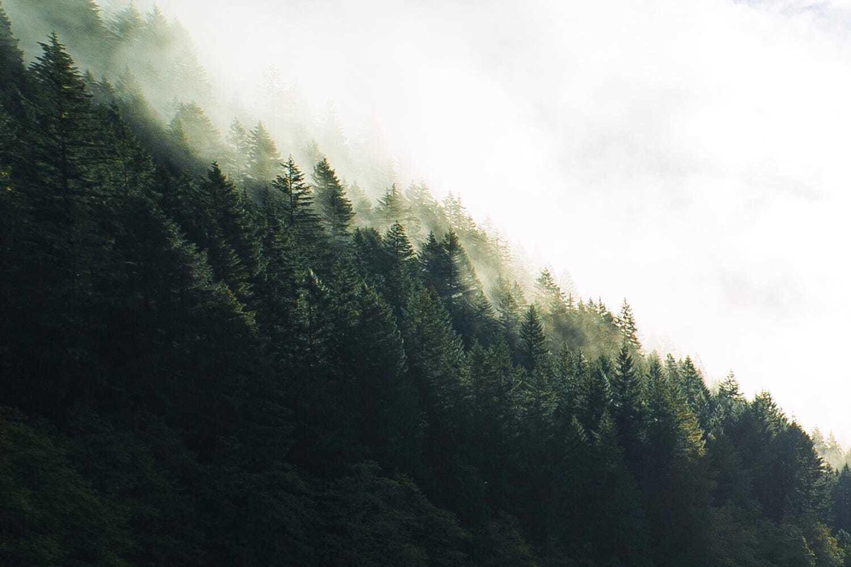 Роскошные пейзажи Норвегии - Страница 3 LTH9aHEQzMQ