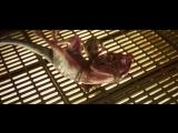 Стражи Галактики. Часть 2 / Guardians of the Galaxy Vol. 2.ТВ-ролик #6 (2017) [1080p]