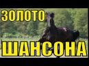 ЗОЛОТО ШАНСОНА / Сборник видеоклипов / Сборник клипов / Блатные хиты