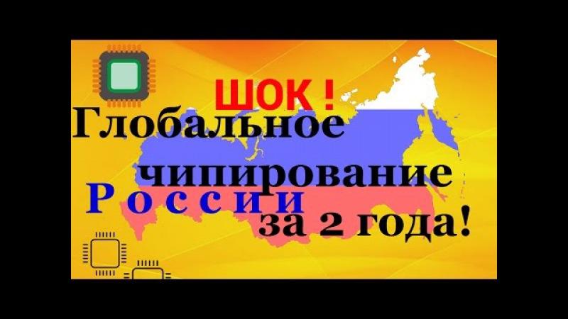 🅰️🅰️ 🅰️ ТОТАЛЬНОЕ ЧИПИРОВАНИЕ в России 🅰️ ОТ КОЛБАСЫ ДО СОМАЛЕТА