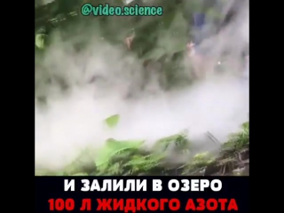 100 литров азота в реку! Ужас