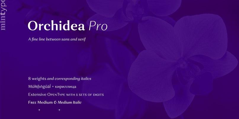 Download Orchidea Pro Medium font (typeface)