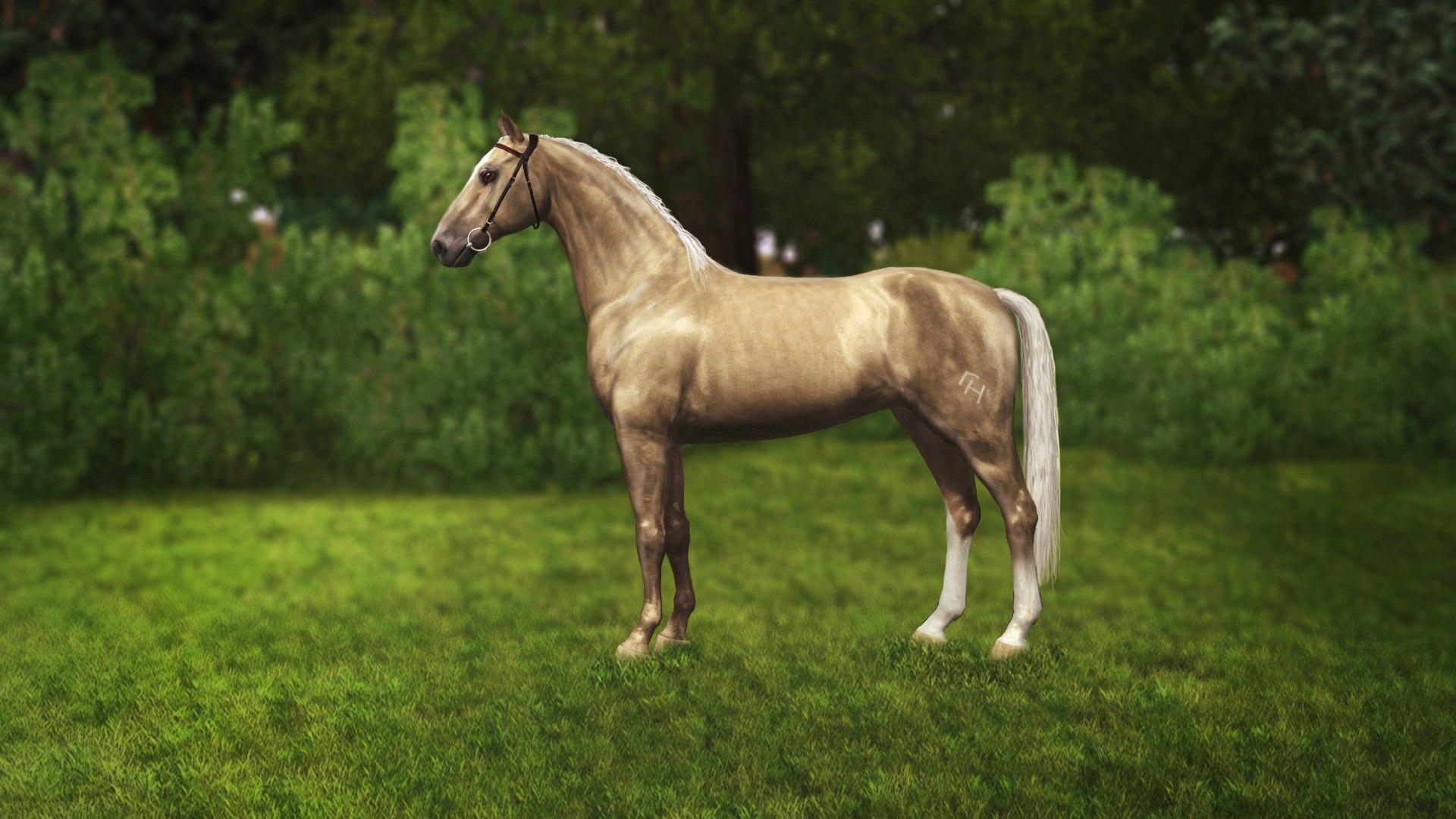 Регистрация лошадей в RHF 2 - Страница 3 KW023vAkPdk